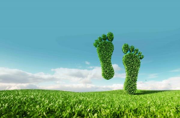 Jeden Tag Nachhaltigkeit - Unser Nachhaltigkeitsleitfaden - Header